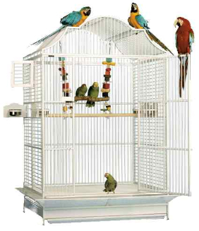 Extra Large Bird Cages