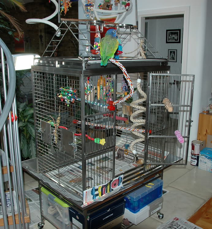 Stainless Steel Playtop Cage