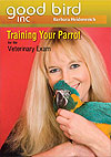 Training Your Parrot for Vet