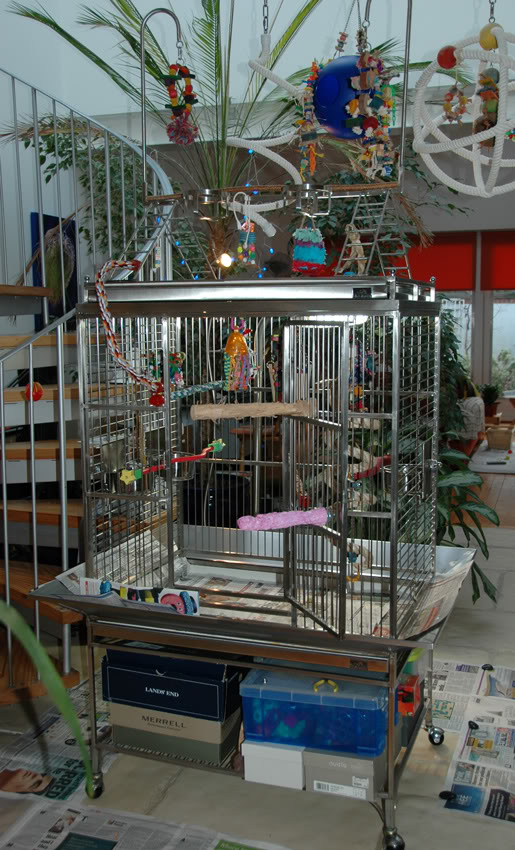 Pionus Cage - Stainless Steel Playtop