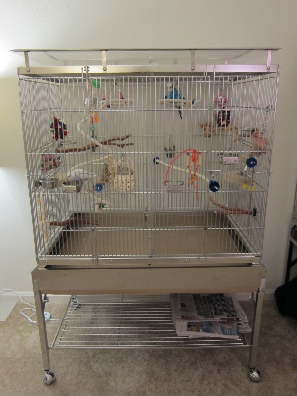 Budgie Cages How To Set Up Your Parakeet S Cage With Toys
