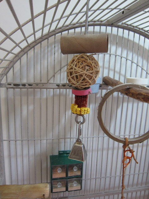View of macaw cage with shredding toys