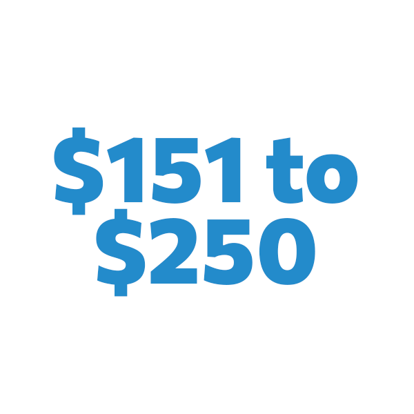 $151 to $250